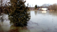 Springwater Township flooding