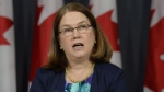 Philpott says Canada will introduce legislation in the spring of next year to begin the process of legalizing and regulating marijuana. (The Canadian Press/Adrian Wyld)