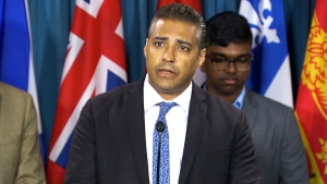 Mohamed Fahmy, Amnesty Int'l on torture protocol