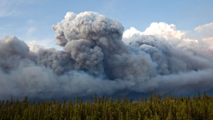 Smoke rises above trees as a wildfire burns in Fort McMurray, Alta., on Wednesday May 4, 2016. (THE CANADIAN PRESS/Jason Franson)