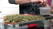 CTV Toronto: Shoppers wants medical pot licence