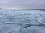 Shattered ice can be seen on Lake Simcoe, near Georgina Island, Ont. on Friday, Jan. 20, 2017. (Rob Cooper/ CTV Barrie)